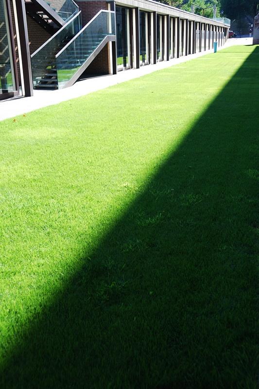 Diagonal shadow