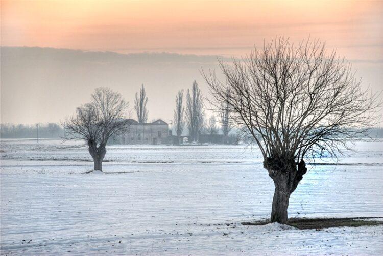 White Countryside