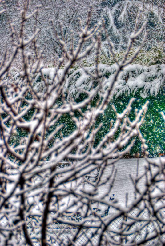 Snow & Snow